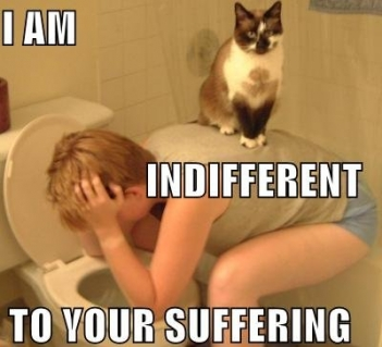 indifferent1